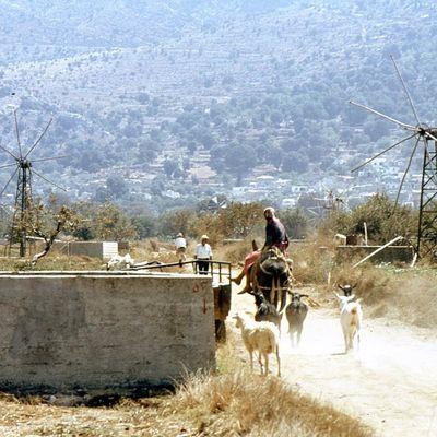 Plateau du Lassithi (Crète)