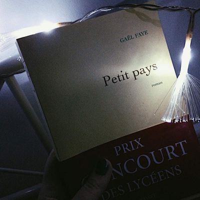 Lecture 1: Petit pays