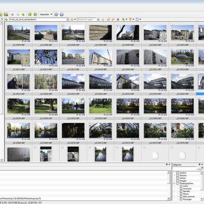 L'automatisation du traitement de l'image avec XnView MP