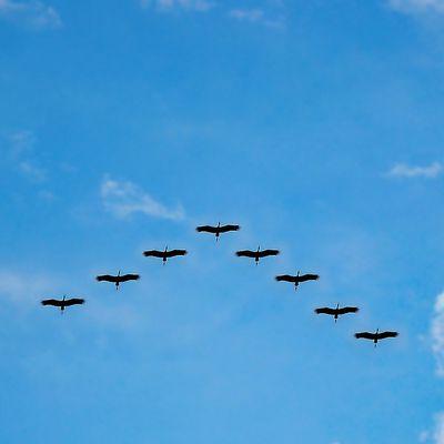 Il est temps de migrer