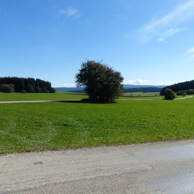 Paysages Suisses / Switzerland countryside