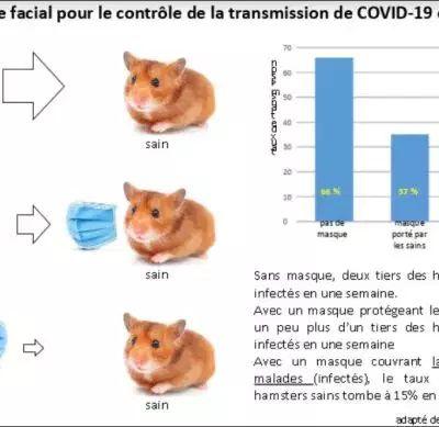 Dernières confirmations concernant les moyens de protection face au COVID-19