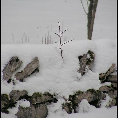 Photo de neige pour mon amie