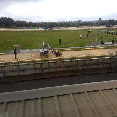 En direct de shelbourne park