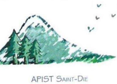 Saint-Dié-des-Vosges :  Le don du livre approche en début 2020.