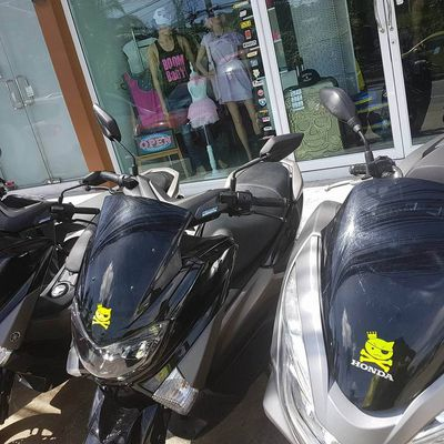 Koh Samui  location scooter Honda et Yamaha
