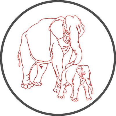 BRODERIE PROMOTION ELEPHANTS