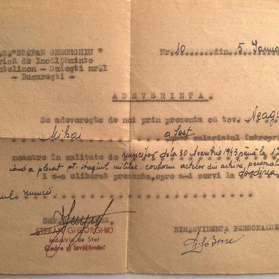 NEAGU MIHAI , Born in 23 November 1924 in Cernauti , Photo from Bucharest . Son NEAGU MIRCEA 54 Years , Born in 29 April 1963 in Bucharest , with My Addressee : NEAGU MIRCEA - Bulevardul Mihai Bravu Nr.98-106 Bloc D.16 Sc.1 Etaj 6 Ap.23 Sector 2 Of.Postal 39 Cod.-021332 Bucharest