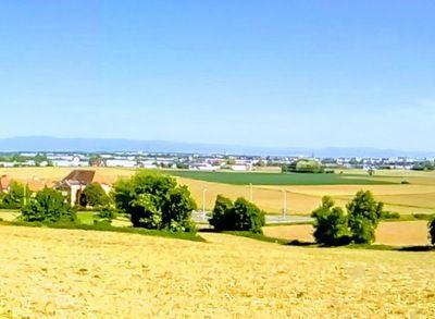Balade sur la colline d'Hausbergen