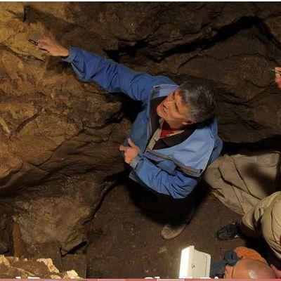 Tout sur l'Homme de Dénisova (et son Crâne), le 3ème Homme, nouveau-Venu parmi nos Ancêtres, qui fabriquait  probablement ses bijoux il y a 49 000  ans et sa fille Denny, métisse de Néandertal