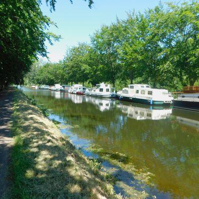 Canal de Nantes à Brest - Etape 6 - Saint-Martin-sur-Oust / Montertelot - 55,3 km - A.R