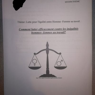 Exemple dossier DGEMC