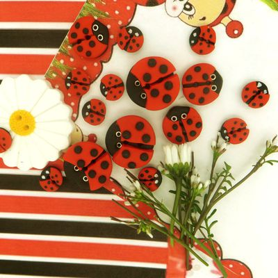 Boutons Cavertine coccinelle
