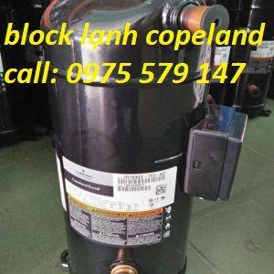 Block máy nén lạnh Copeland