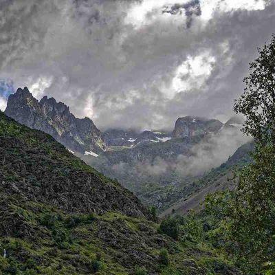 photos-botanique-nature.over-blog.com