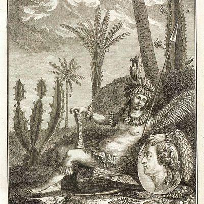 Histoire des Plantes de la Guiane françoise, d'Aublet