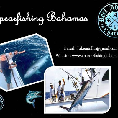 Charter a Boat for Spearfishing Bahamas