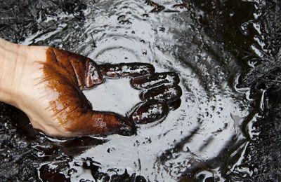Un tribunal privé international annule l'amende historique de 9,5 milliards contre le pétrolier Chevron