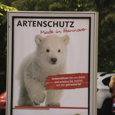 Besuch Erlebniszoo Hannover am 23.05.2020