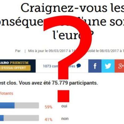 Manipulation : Au Figaro, il faut voter POUR l'euro !