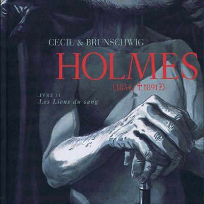 Holmes (1854/ 1891 ?) Livre 2 : Les Liens du sang de CECIL et Luc BRUNSCHWIG