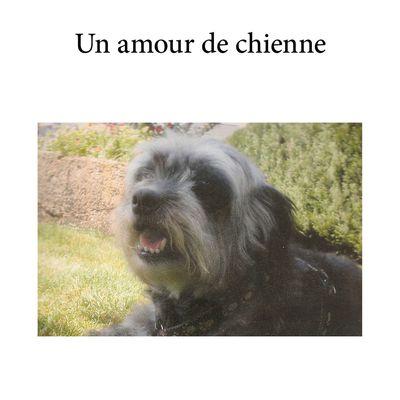 """Sortie du livre """"Un Amour de chienne"""" Sophie rabussier : 07.01.2017"""