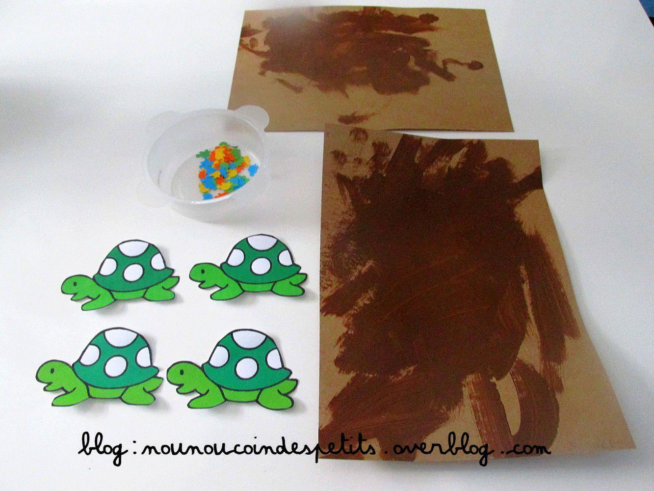 .. Les tortues ..